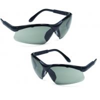 Europrotection THETA - ochelari de protecție fumurii